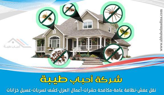 شركة مكافحة حشرات بينبع 0541425004 602746953.jpg