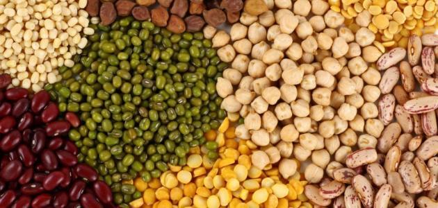 الغذائية بالبروتين للنباتيين 2018 617198327.jpg